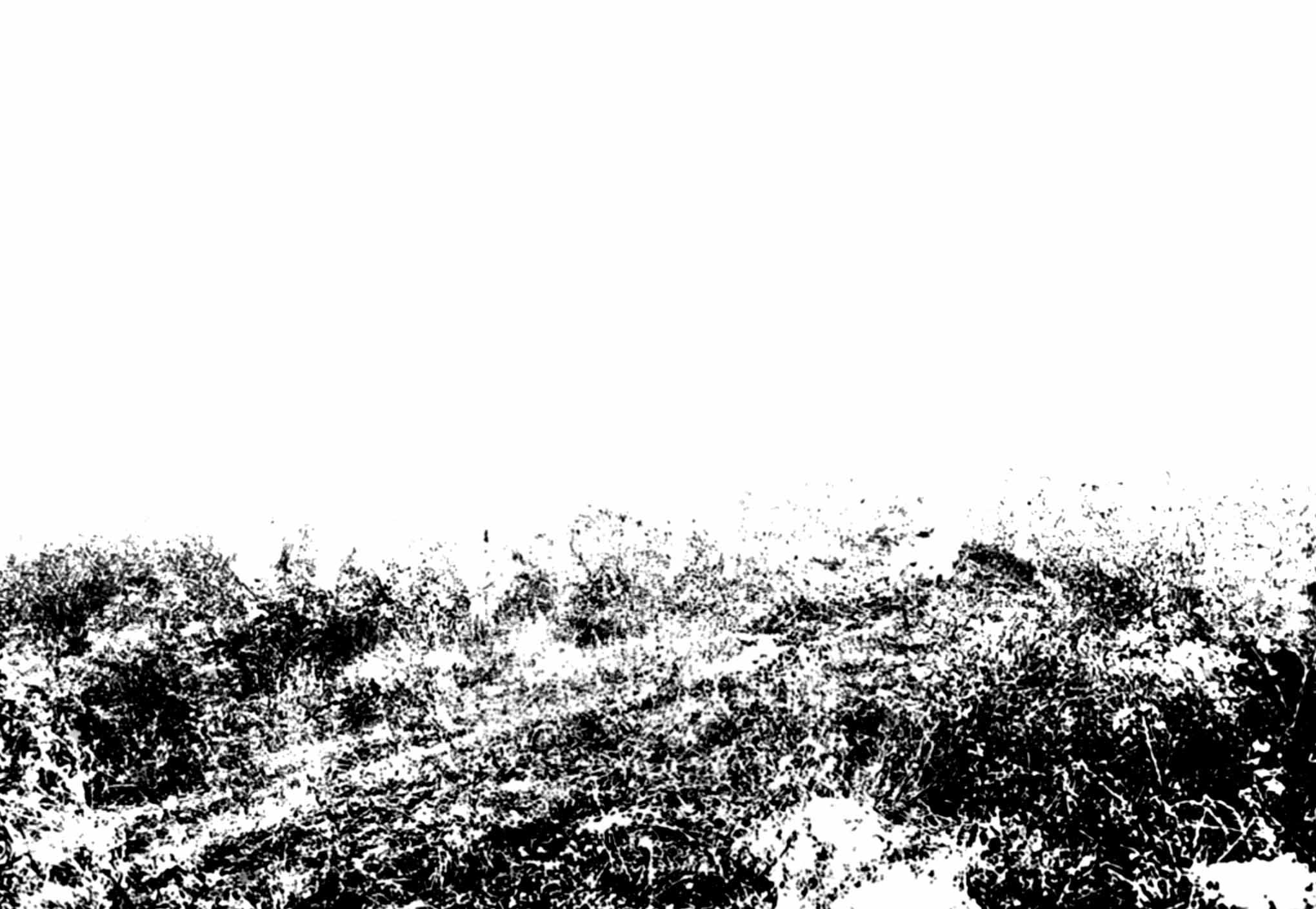 """"""" L'Enterrement dans les Blés """" - Encre de Chine sur papier Canson 1.05 X 0.75 - Prix sur demande -"""