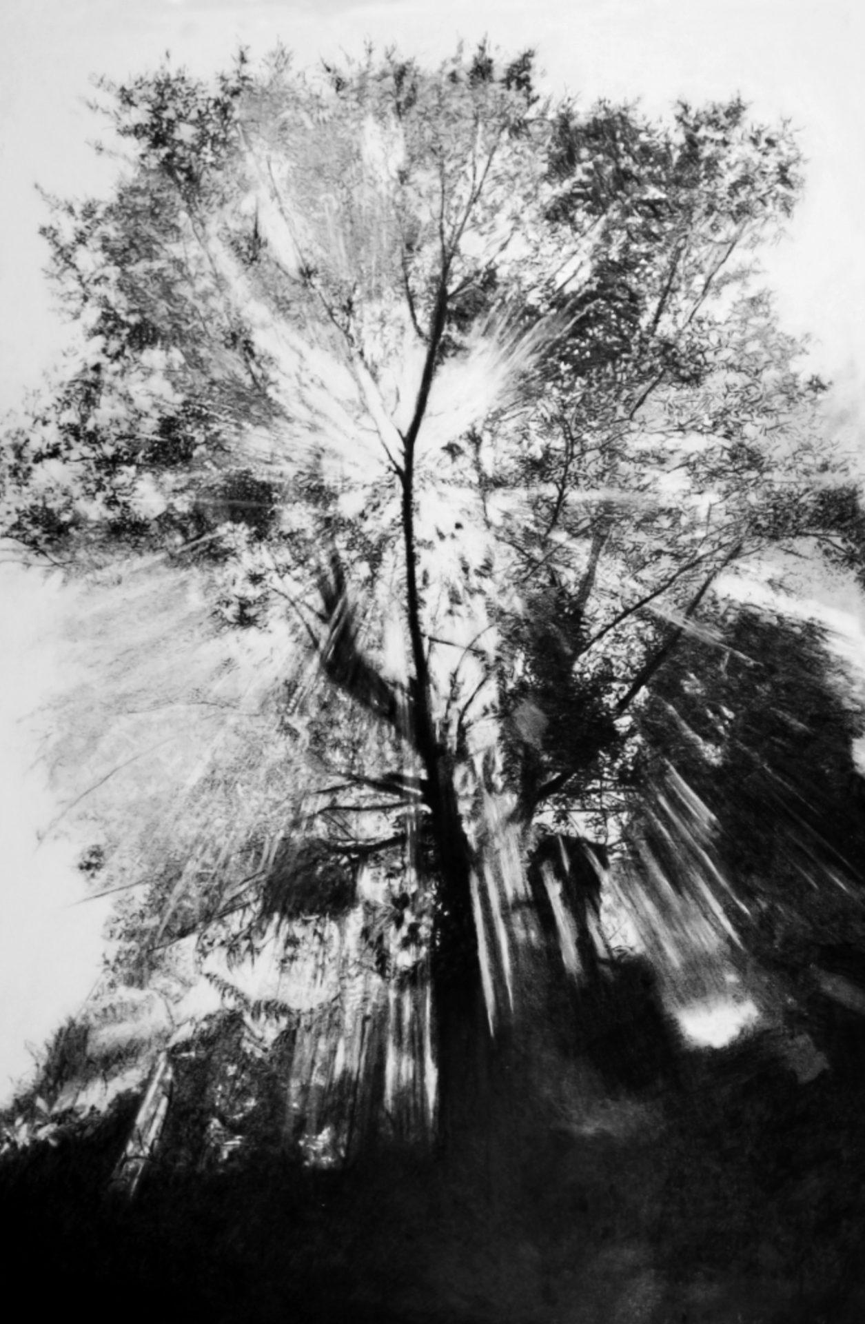 """""""La Parfaite Lumière""""- Dessin à la Pierre Noire sur papier Canson - 1.20 X 0.80 - Collection particulière -"""