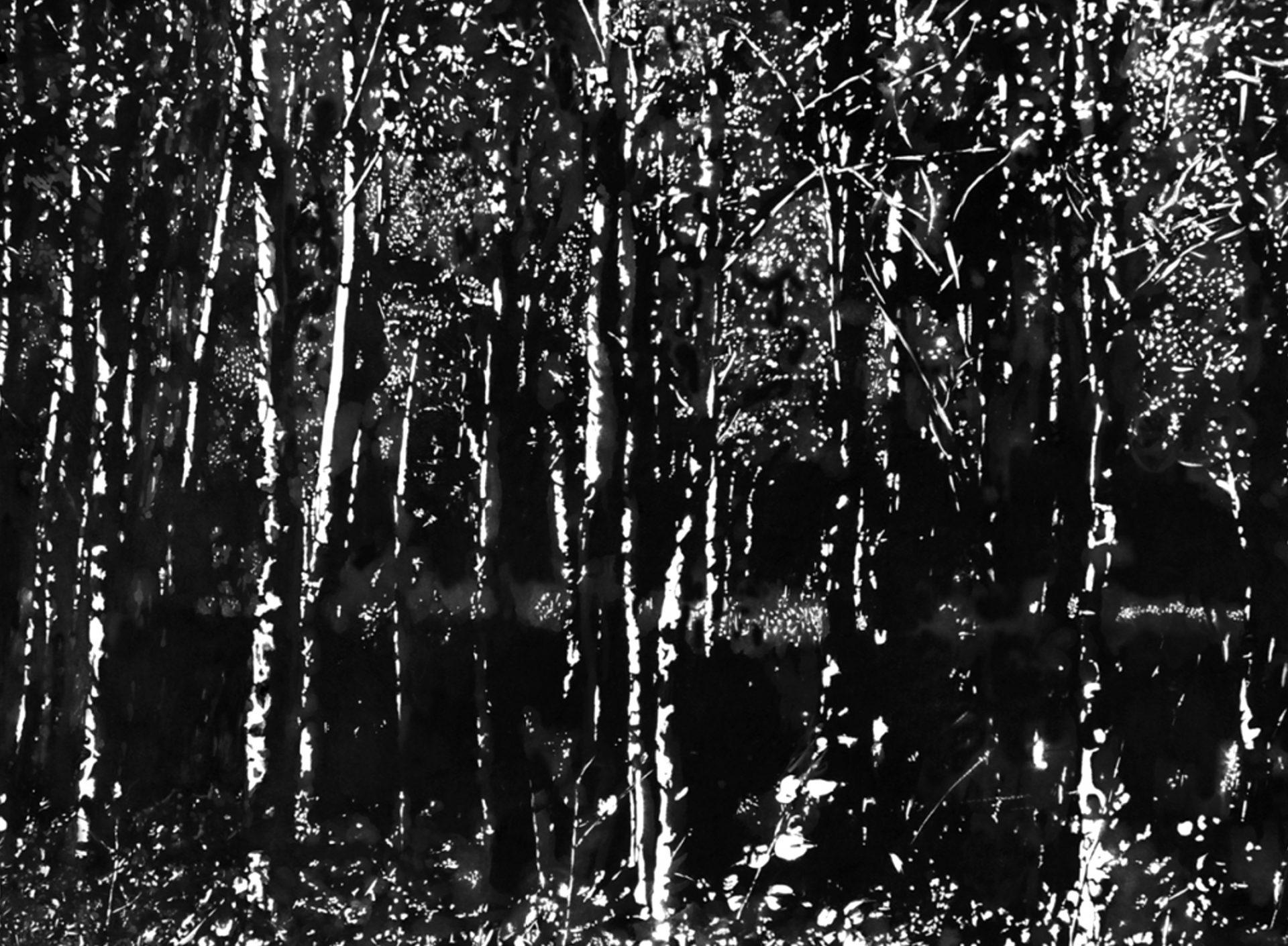 """"""" La Forêt des Ombres """" - Dessin à la Pierre Noire sur papier Canson avec rehauts de blanc - 1.00 X 0.75 - Prix sur demande -"""